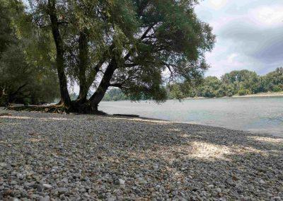 Lafranconi beach (2)