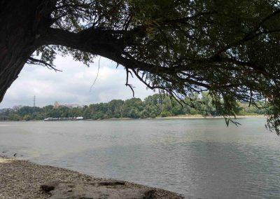Lafranconi beach (4)