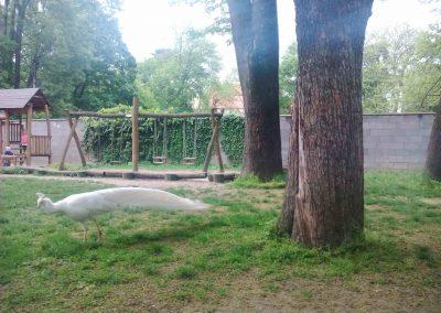 Zamocky park Pezinok 042018