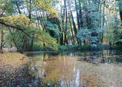 Zamocky park Pezinok 102016 (2)
