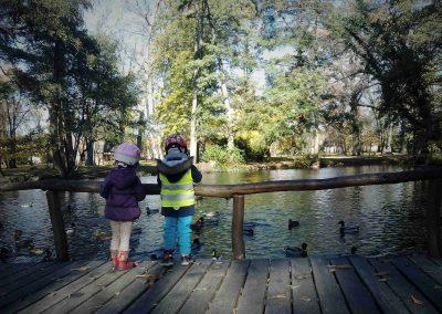 Zamocky park Pezinok 112017