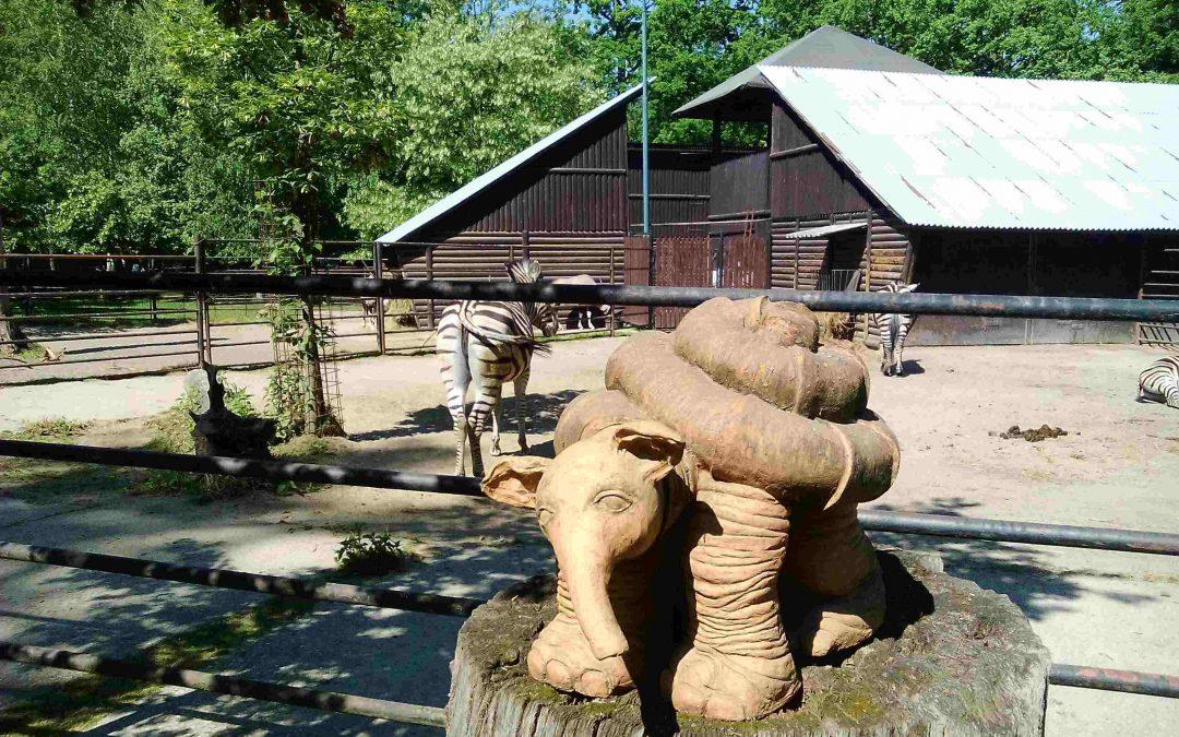 Zoo Hodonín + 3 D bludisko v korunách stromov