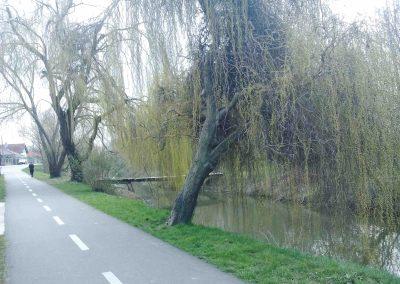 Cyklochodnik Bernolakovo - Nová Dedinka 042018 (3)