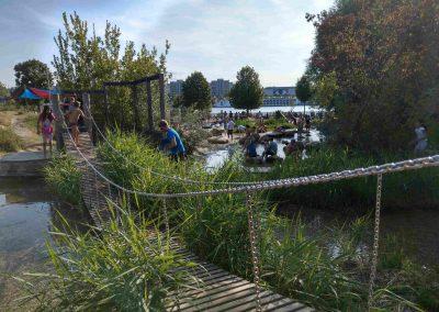Donauinsel Vieden 082018 (15)