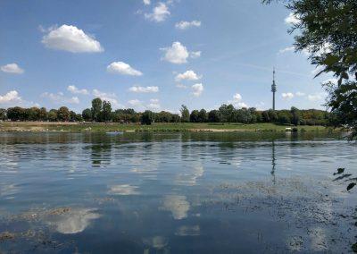 Donauinsel Vieden 082018 (4)