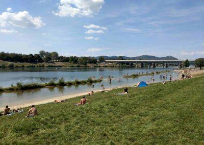 Donauinsel Vieden 082018 (6)