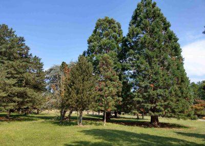 Farma Príroda Stupava 072018 (4)