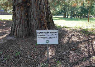 Farma Príroda Stupava 072018 (5)