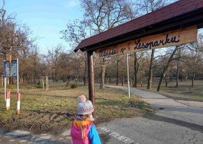 Lesopark Vrakuňa 022019 (1)