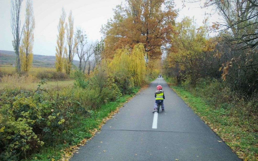 Cyklochodník JuRaVa