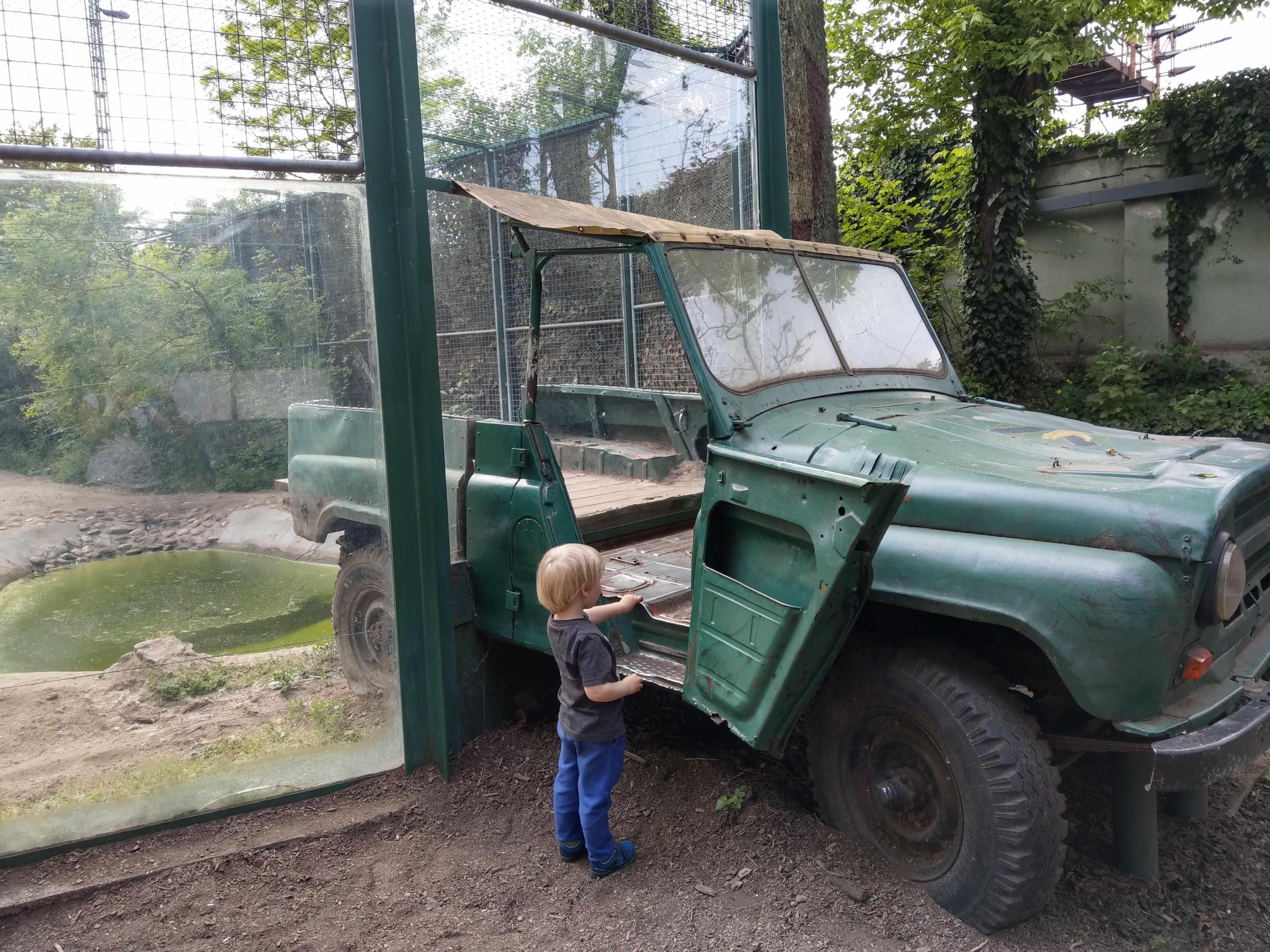 Zoo Budapest 042019 (23)