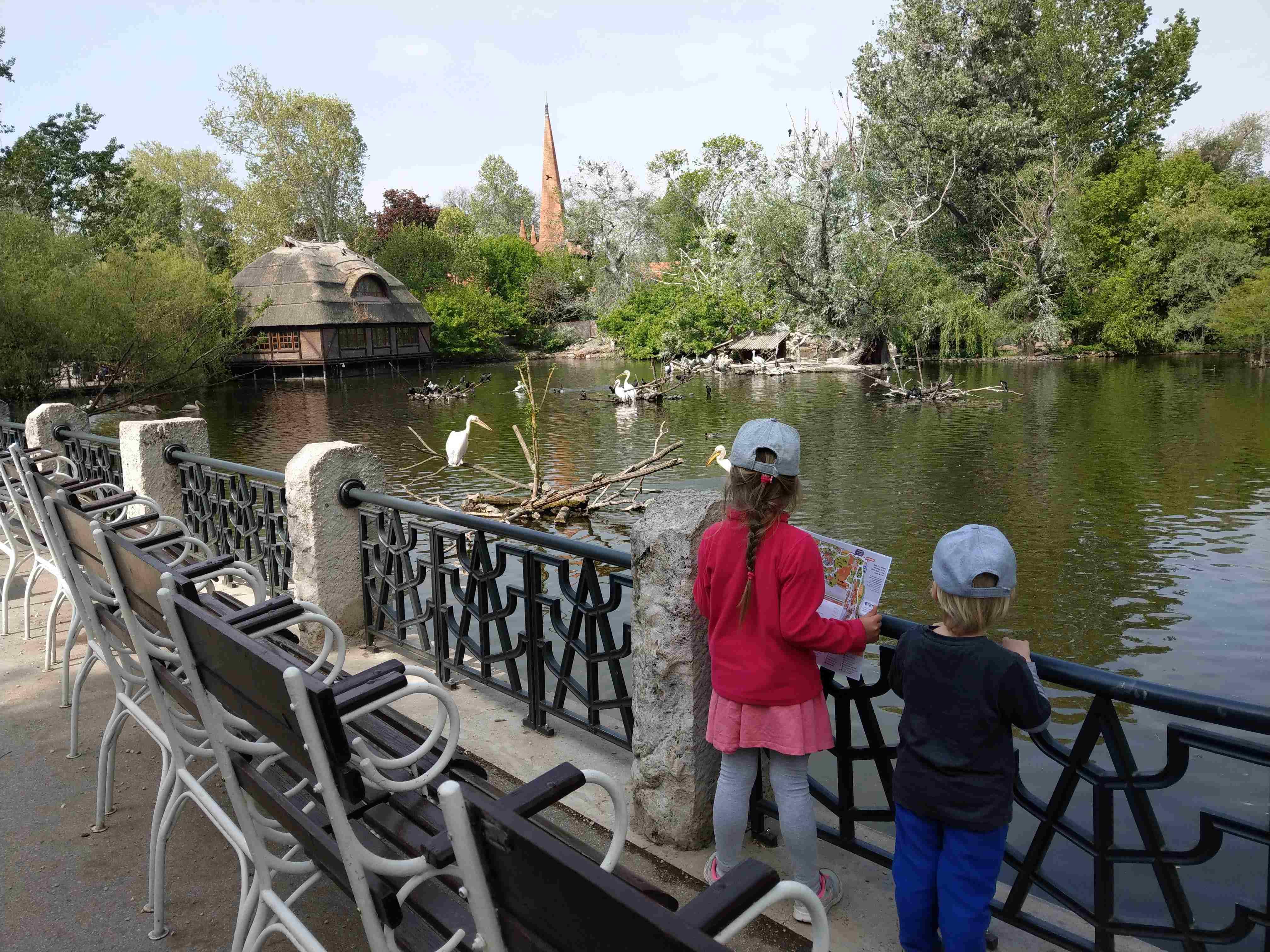 Zoo Budapest 042019 (3)