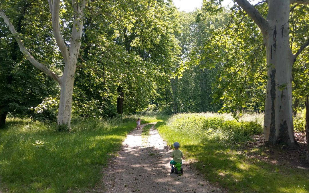 Park a kaštieľ Rusovce