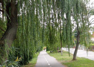 Cyklochodnik Bern.-Nova Dedinka 072019 (2)