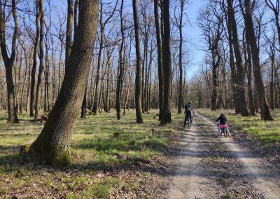 Budmerický lesopark na bicykli s deťmi 05042020 (8)