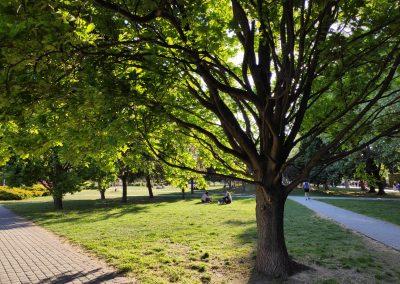 18 Park a detské ihrisko Ostredky 052020 (11)