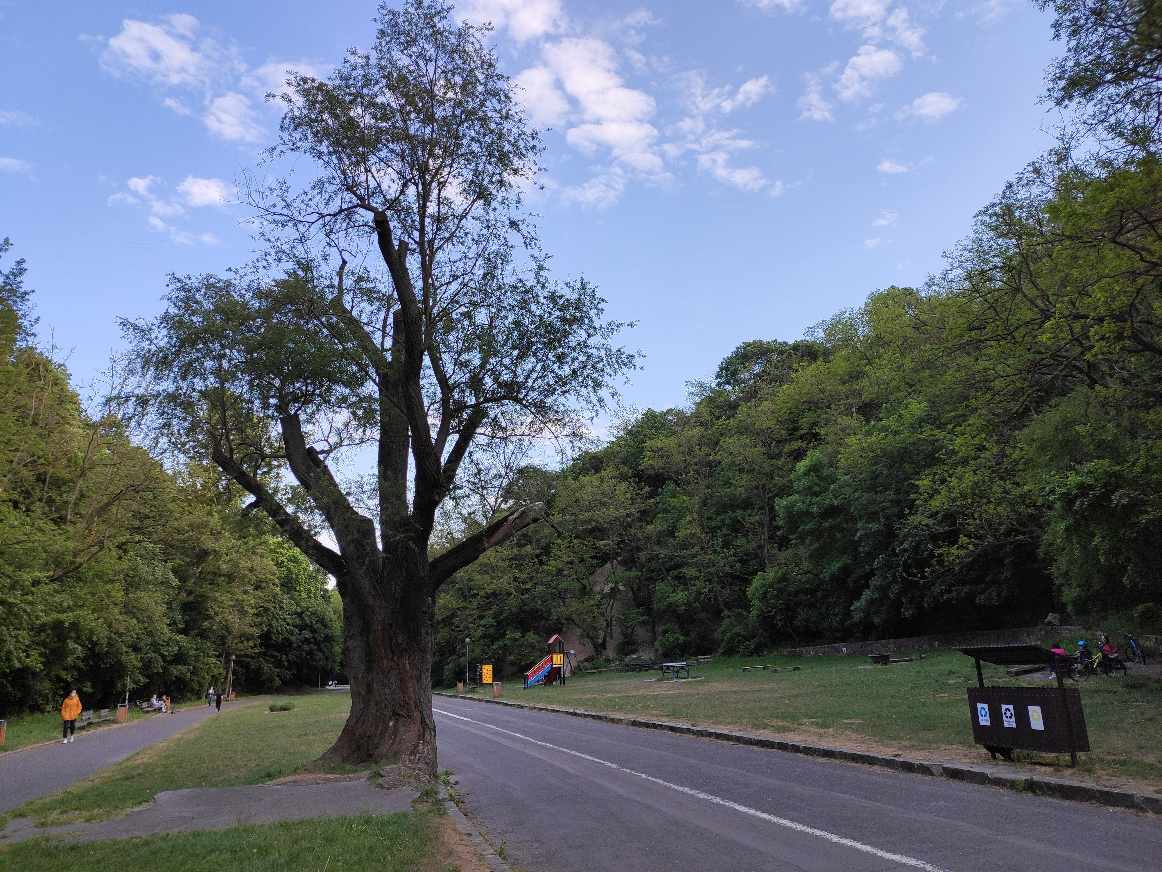 Park SNP Karlova VEs1