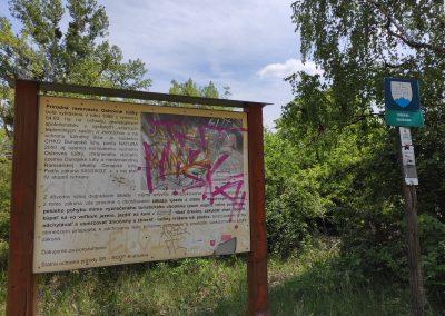 Z Rusoviec do Čunova na bicykli s deťmi 052020 (4)