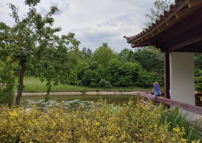 Arboretum Mlynany 052020 (16)