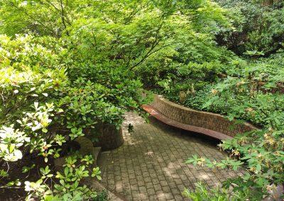 Arboretum Mlynany 052020 (19)