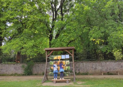 Arboretum Mlynany 052020 (20)