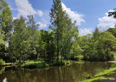 Arboretum Mlynany 052020 (3)
