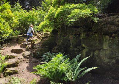 Arboretum Mlynany 052020 (9)