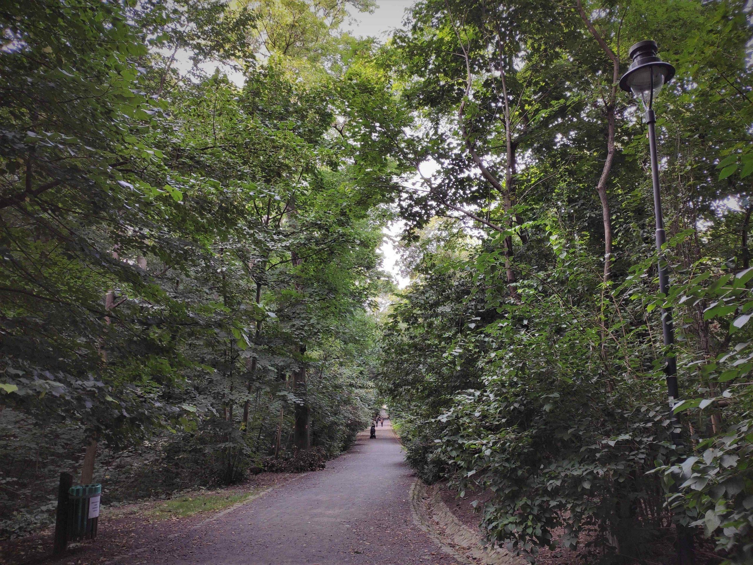 Horaren Horsky park
