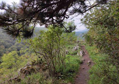 10 Molpír a Hlbočianska dolina Smolenice 102020