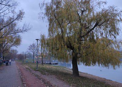 Jazero Štrkovec 112020 (2)