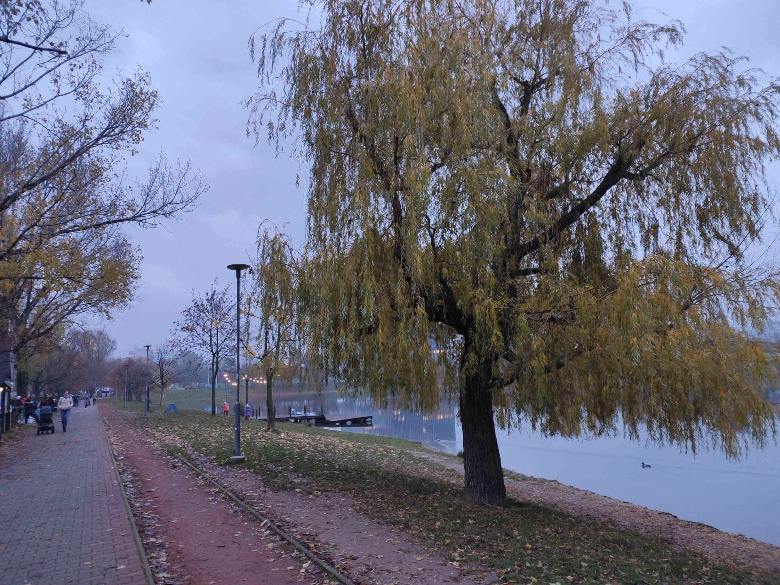 Jazero Štrkovec 16112020 (1)