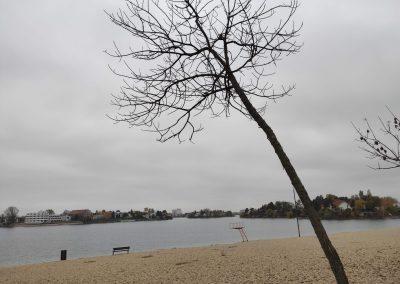 Slnecne jazera 112020 (14)