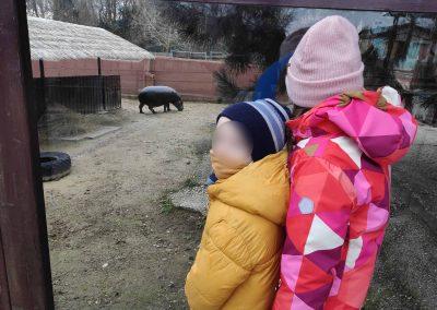 03 Zoo Bratislava 23012021 (3)