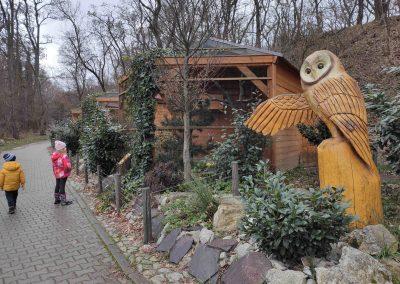 21 Zoo Bratislava 23012021