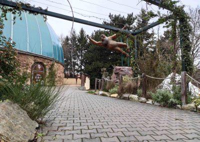 27 Zoo Bratislava 23012021