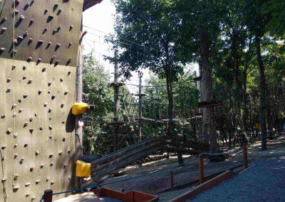 Balatonboglar 25072019 (8)