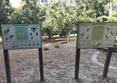 12 Mestsky Park v Nitre 21072021
