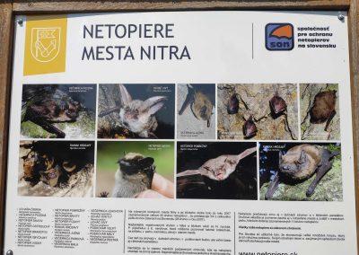 Mestsky Park v Nitre 21072021 (2)