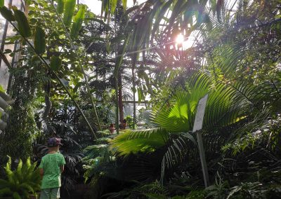 Botanicka zahrada 26092021 (11)