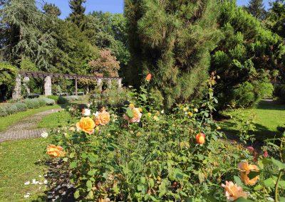 Botanicka zahrada 26092021 (13)