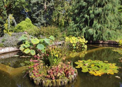 Botanicka zahrada 26092021 (14)