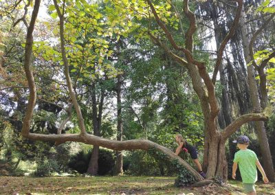 Botanicka zahrada 26092021 (15)