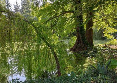 Botanicka zahrada 26092021 (16)
