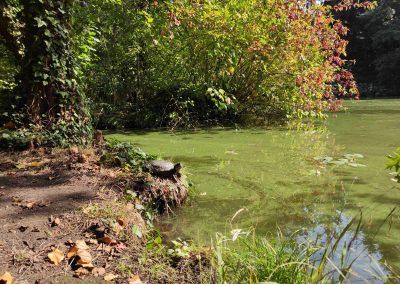 Botanicka zahrada 26092021 (19)