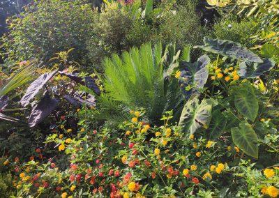 Botanicka zahrada 26092021 (5)