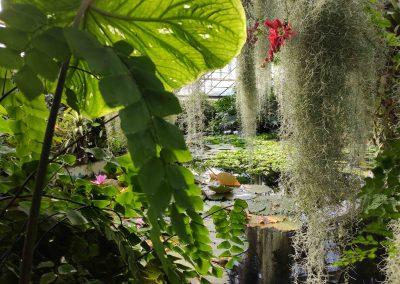 Botanicka zahrada 26092021 (7)